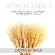 Vida Integral Book Cover
