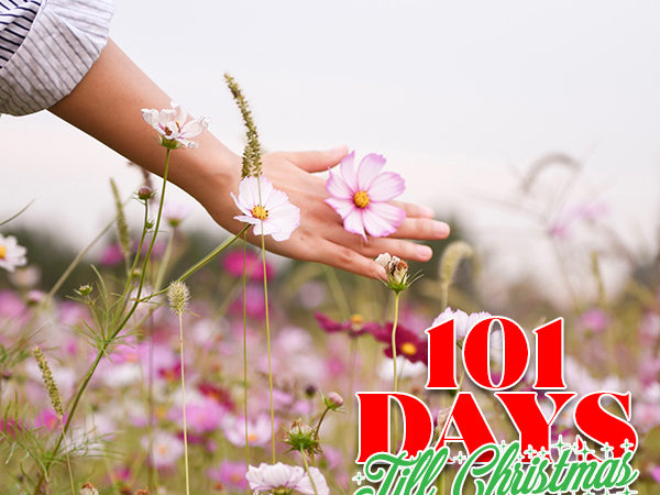 101 Days till Christmas Day 89 Pre Holiday Self Care Check up