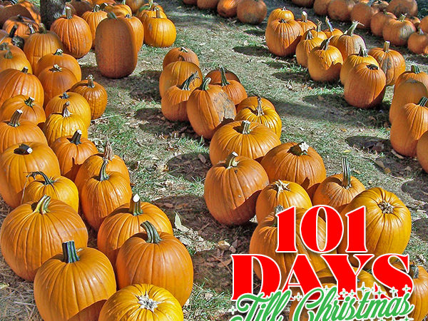 101 Days till Christmas Day 67 Fall Festivals in Orlando