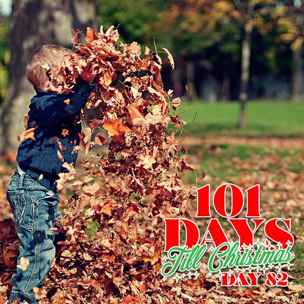 101 Days till Christmas Day 82 Fall Family Fun