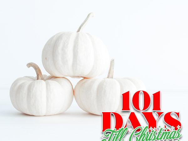 101 Days till Christmas Day 83 Frugal Fall Decor