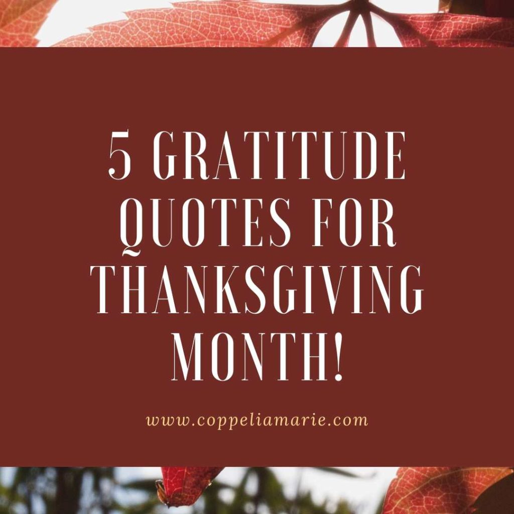 5 Gratitude Quotes for Thanksgiving Month!