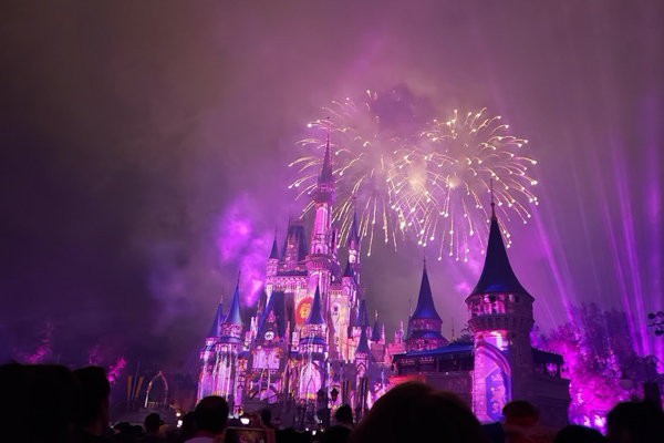 Magic Kingdom fireworks light up a purple sky as if to say it's safe to start 2020 now!